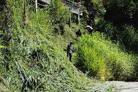 Funcionários da Prefeitura trabalham na revitalização da Piscina Sloper, no Soberbo