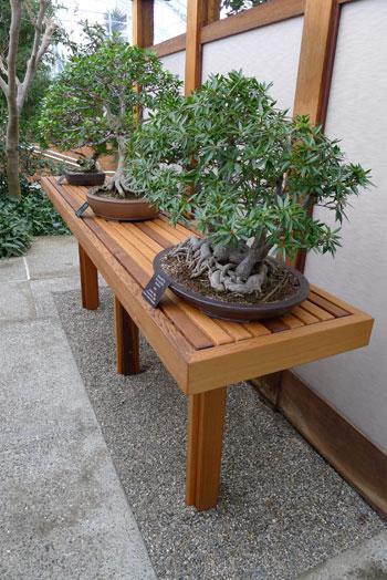Bonsai Display Table. Tavolo Principale: 250cm Lunghezza, 85cm Larghezza,  83cm Altezza   Bonsai   Pinterest   Bonsai, Gardens And Bonsai Nursery