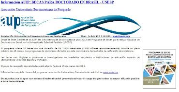 Información AUIP: BECAS PARA DOCTORADO EN BRASIL - UNESP
