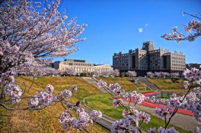 4 Fakta Unik Kuliah di Jepang yang Wajib Kamu Ketahui!