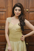 Pranitha Subhash Photos at Pandavulu Pandavulu Tummeda Audio-thumbnail-15
