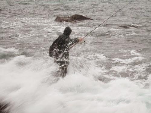 El robalo: La pesca con poppers y paseantes