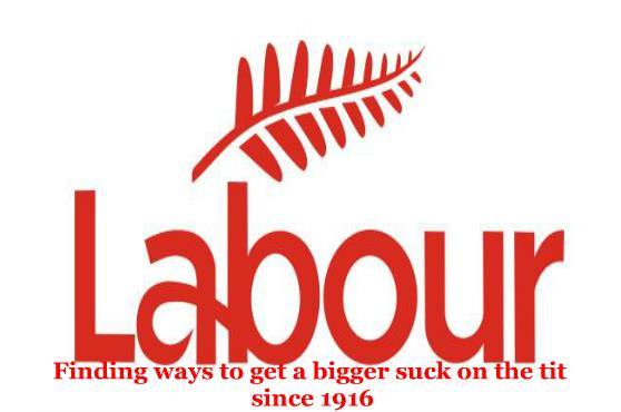 four king owl labour has a new leader