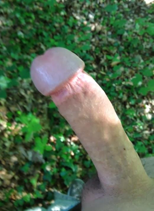 Teile deine nackten Schwanzbilder