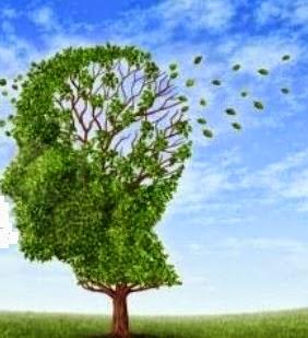 Le cannabis finit par affecter la mémoire dans Santé cerveau%2Barbre