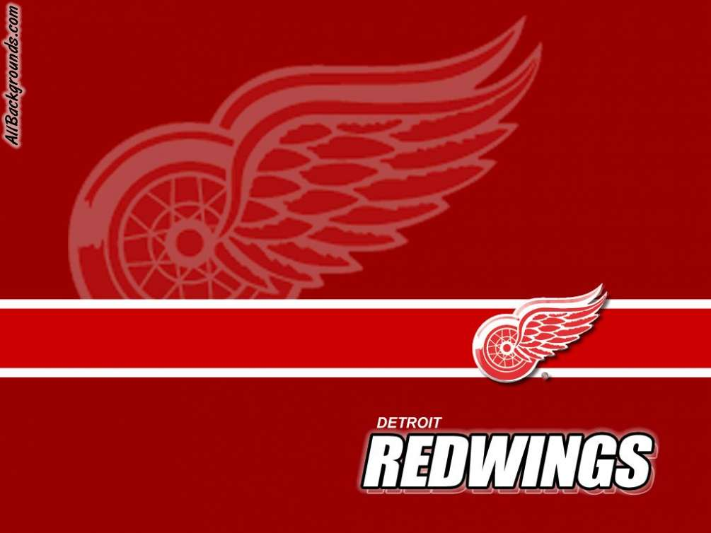 detroit red wingd