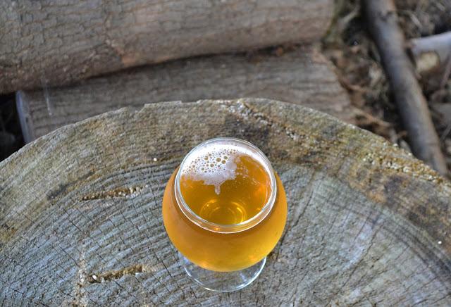 100% Brett Custersianus Pale Ale