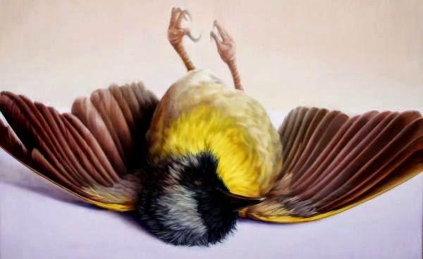 burung-mati-karena-gigitan_365554