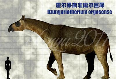 Dzungariotherium