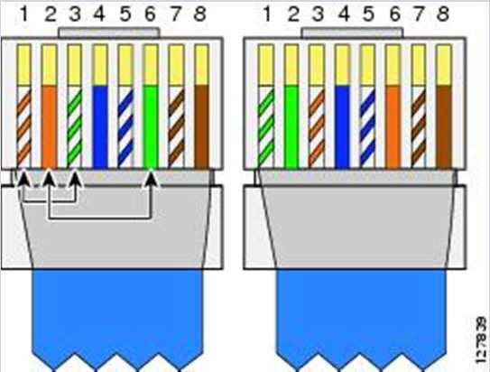 cat6 utp wiring diagram  | 598 x 443