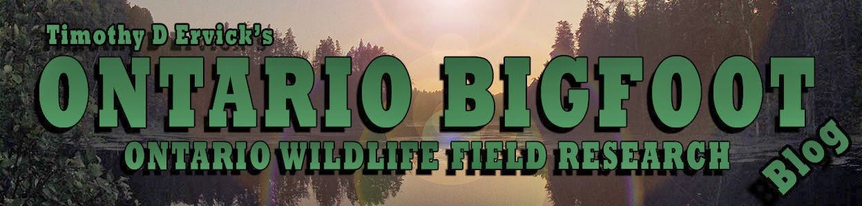 Ontario Wildlife Field Research