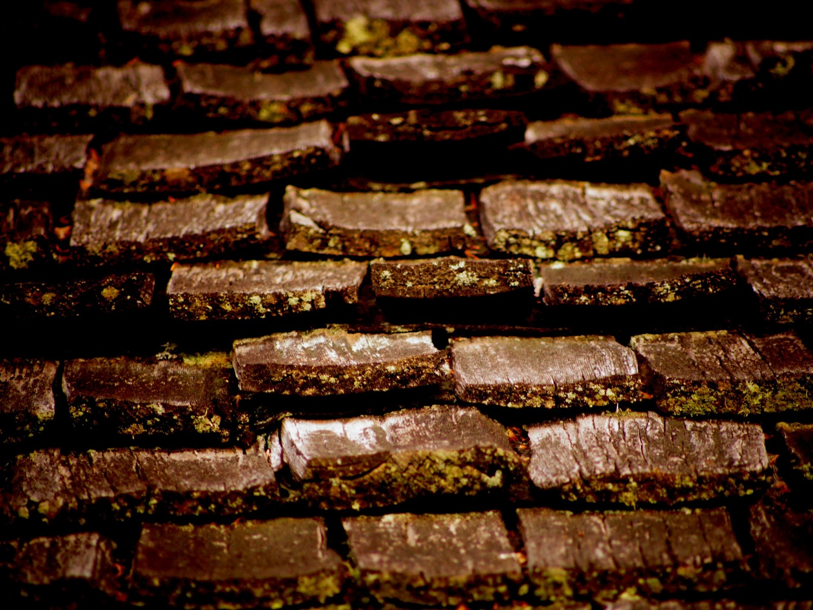wooden tiles photo