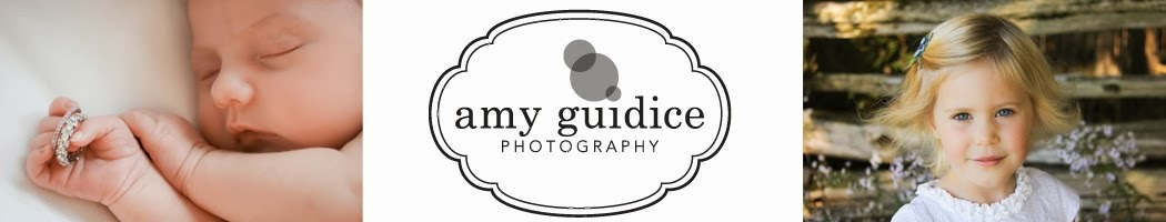 Amy Guidice Photography