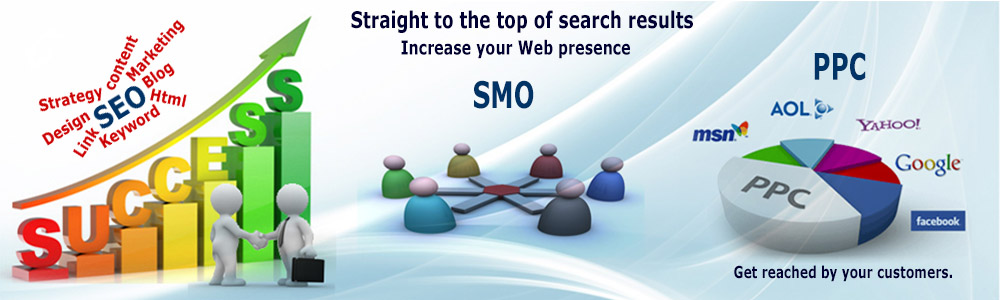Seo Services and Consultant Company in India