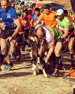 Canicross Aranjuez Mushing