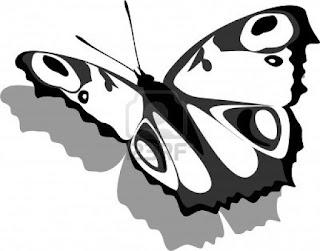 mariposa gris colorear
