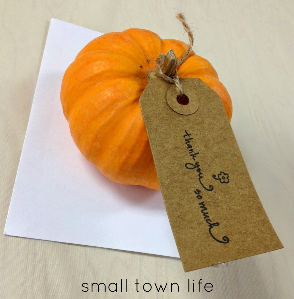gender neutral, fall baby shower, pumpkins, rustic shower, fall baby shower favors, mini pumpkin favors, twine