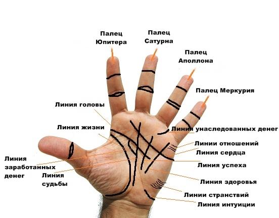 Хиромантия как прочитать свою руку
