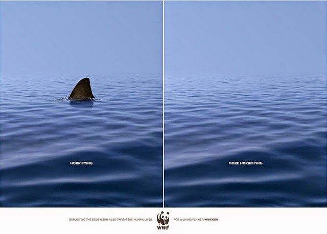 wildlife-ads-4