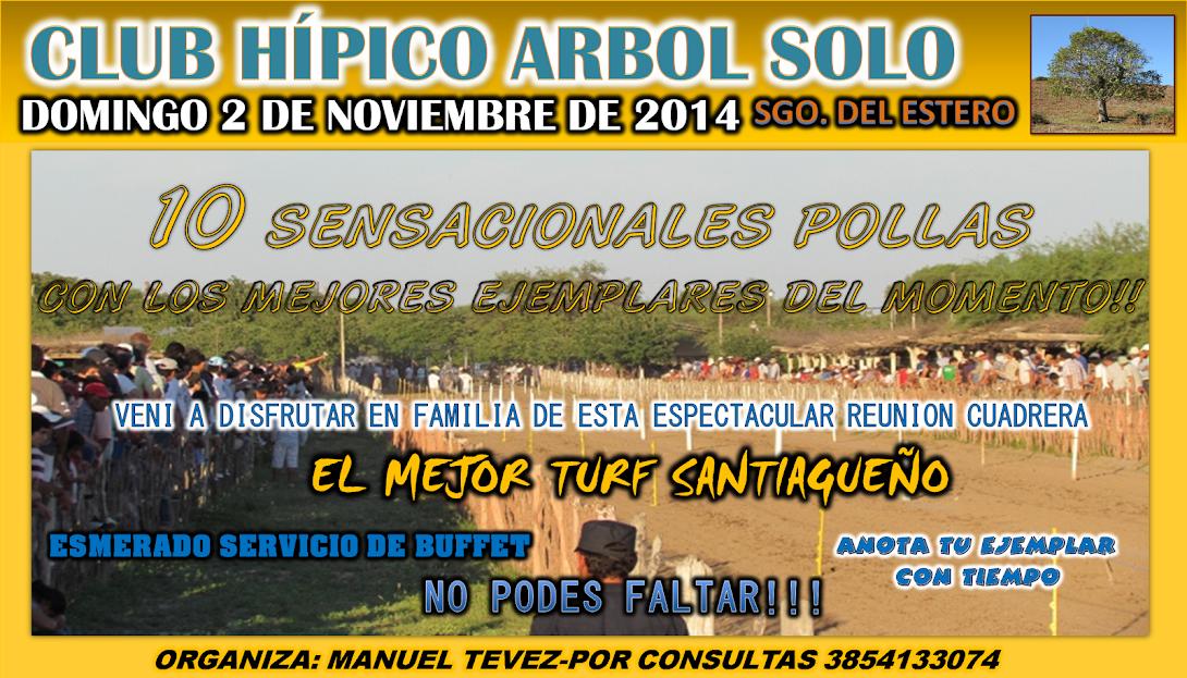 02-11-14-ARBOL SOLO-S.E.