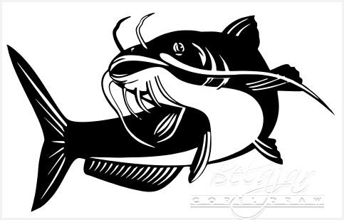 Ikan Lele