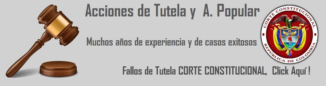 ACCCIONES DE TUTELA Y POPULAR