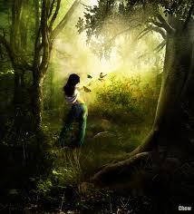 El bosque encantado III