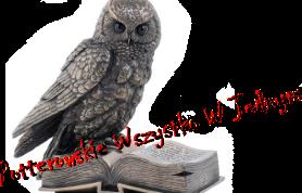 http://potterowskie-wszystko-w-jednym.blogspot.com/