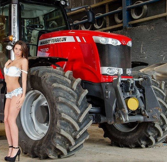 Massey Ferguson Girls : The small hold will not go down without a fight tractor