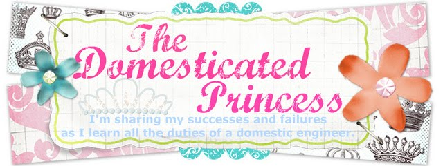 The Domesticated Princess
