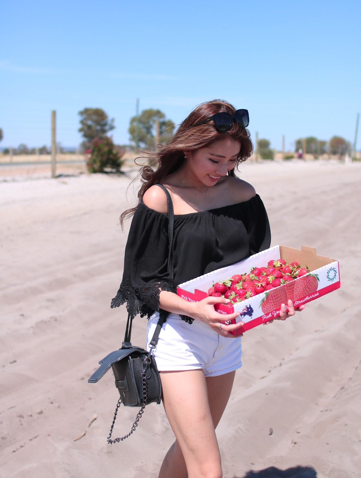 bullsbrook, strawberry, farm, perth, australia