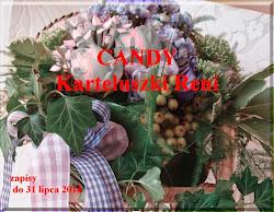 Wygrane Candy u Reni  15.08
