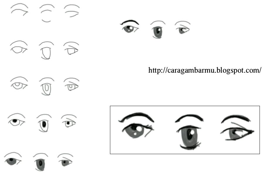 Anime Eye Shapes Eye Shape From Anime