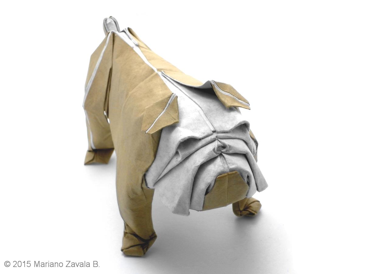Mariano Mi Mundo El Origami