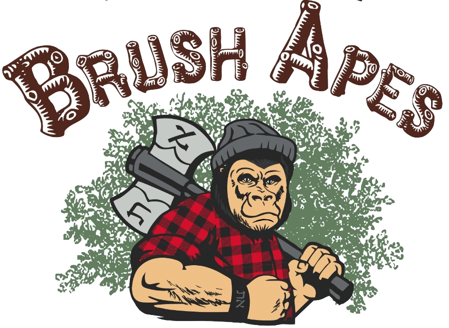 Brush Apes - Restoring a Waste Free Culture