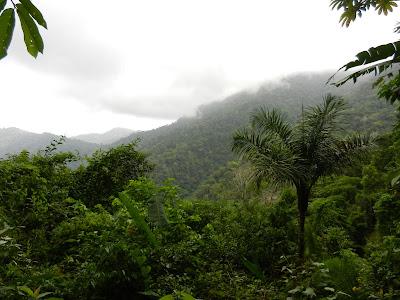 Cerro Pirre
