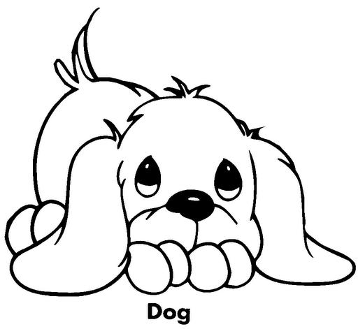 Dibuja y colorea perri...