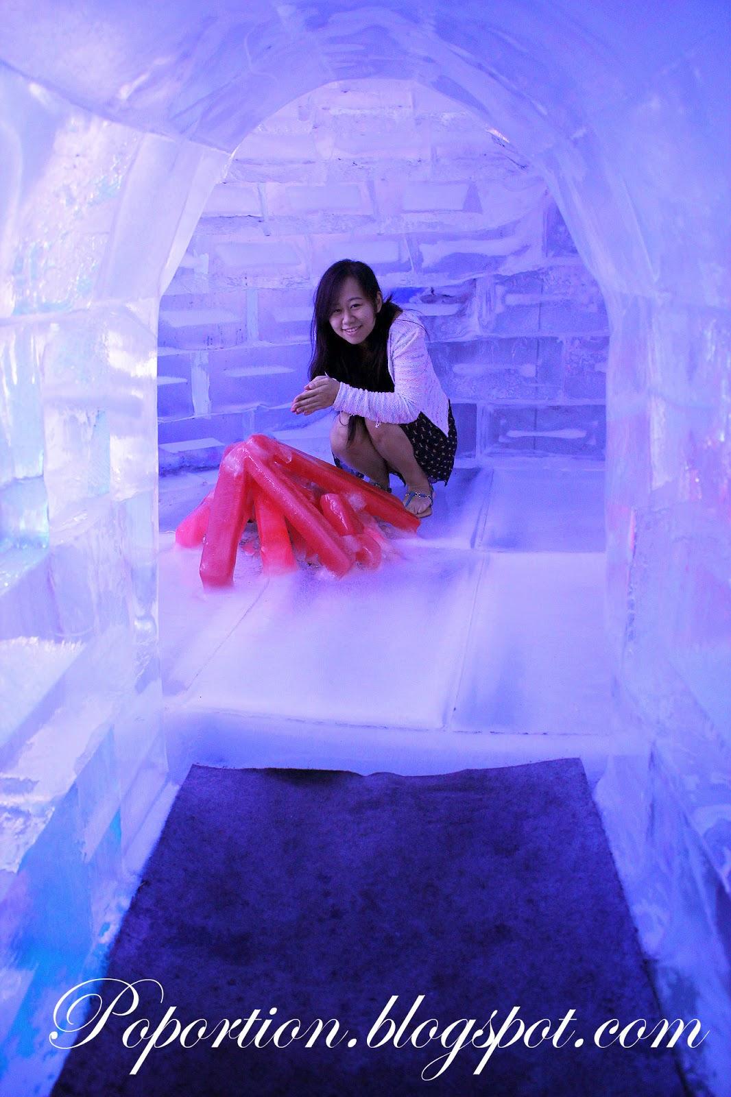 ice museum trick eye museum