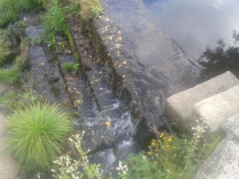 Água do Rio Águeda