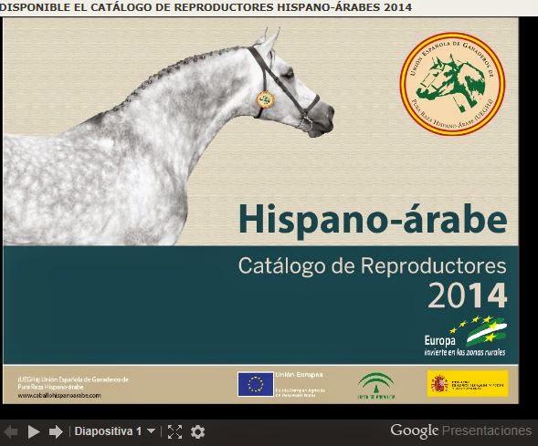 http://www.caballohispanoarabe.com/index.html