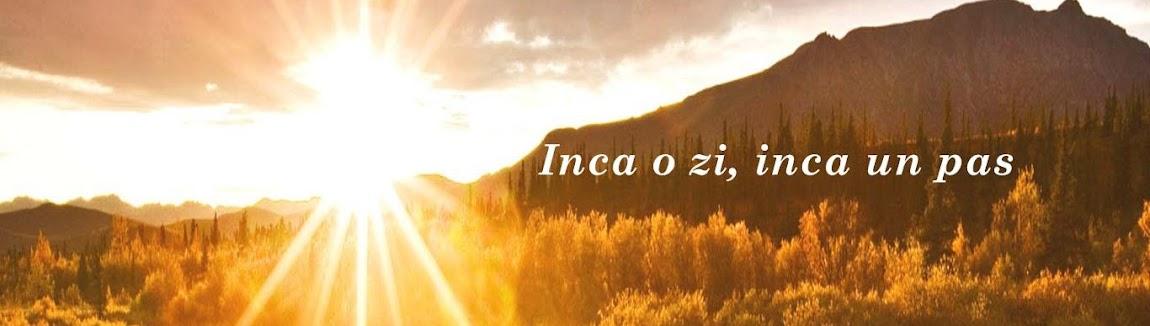 Radea Cristian