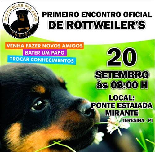 Criadores realizam encontro de cães da raça Rottweiler na Ponte Estaiada