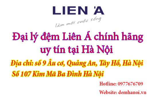 http://1.bp.blogspot.com/-e24C6TD4bMI/VnexENIFXwI/AAAAAAAAAdc/_8ponYyHFBg/s1600/dai-ly-dem-lien-a-chinh-hang.jpg