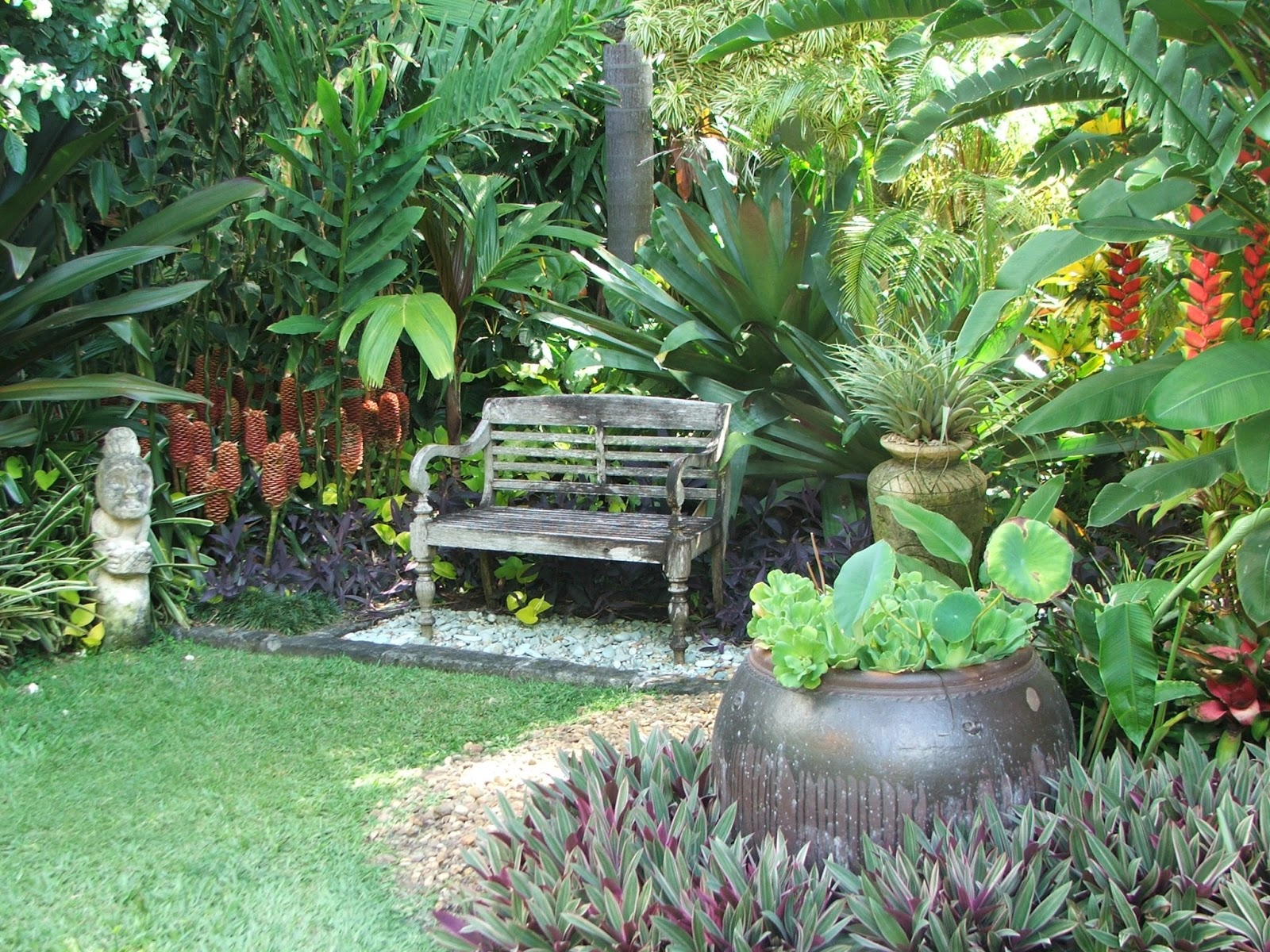Onslow and miss b tropical paradise - Ideas para tu jardin ...