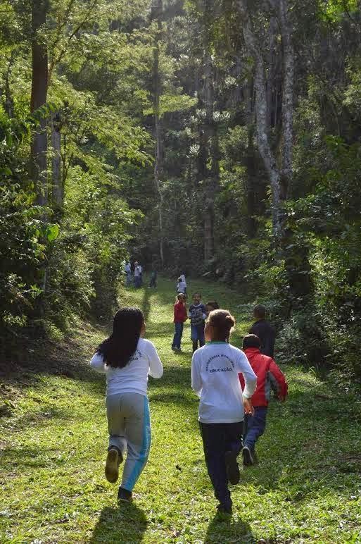 Crianças fazem caminhada pela Trilha do Jacu, no Parque Municipal