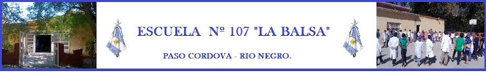 Escuela 107 La Balsa - Paso Cordova (General Roca - Rio Negro)
