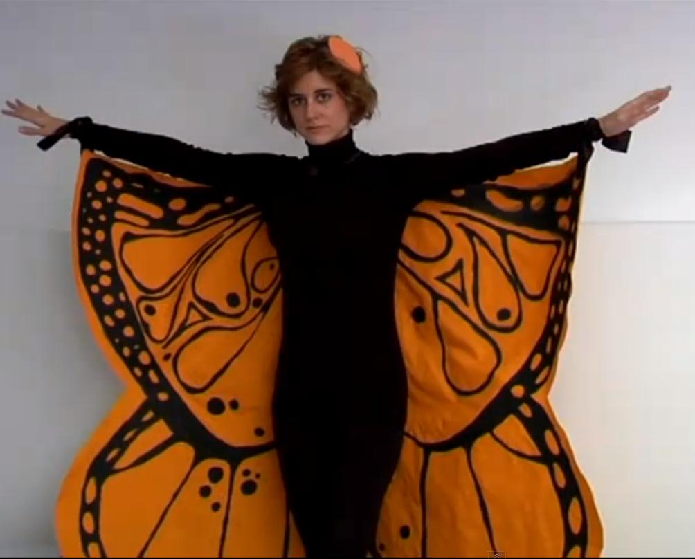 Alas de mariposa traje adulto