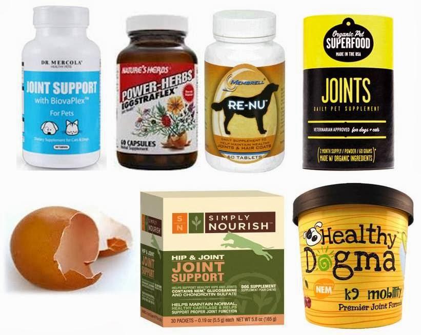 natural alternatives to prednisone for dogs