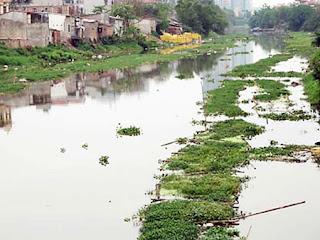 ô nhiễm sông ngòi