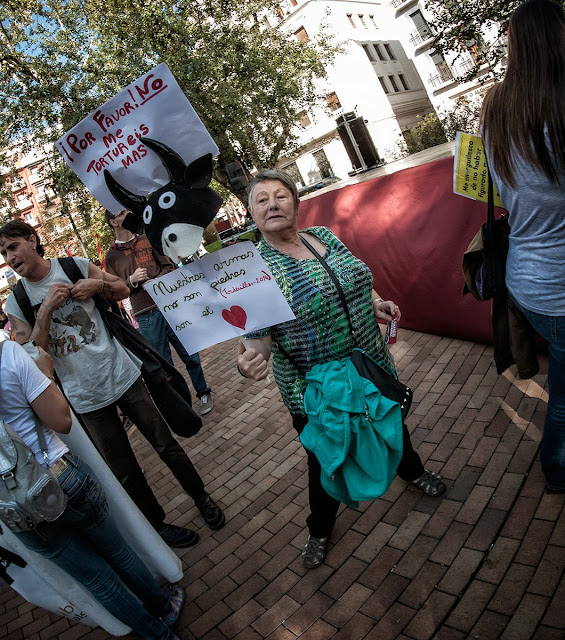 Zaragoza Antitaurina contra el toro de la Vega en Tordesillas -  Anti bullfighting Fiestas del pilar Remember
